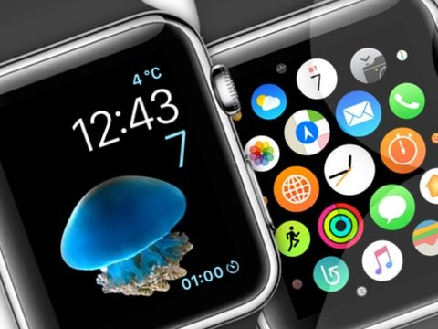 Скриншот Apple Watch